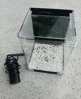 Fish tank 10L and filter