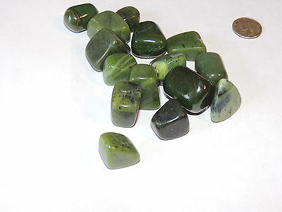 Siberian Jade Tumbled stones from Russia 1/4 pound (11922)