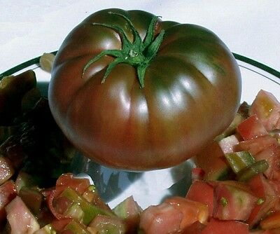 Seeds Rare Tomato Black Large Russian Vegetable Organic Heirloom Ukraine