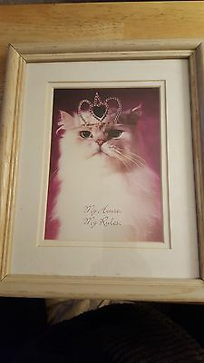cat picture with frame