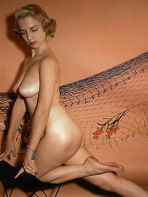 1960s Busty Nude Blonde Posing in a Flower net backdrop 8 x 10 Photograph