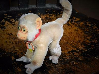 STEIFF VINTAGE 50s MINIATURE MOHAIR MONKEY COCO PAVIAN BABOON COLLAR & CHEST TAG