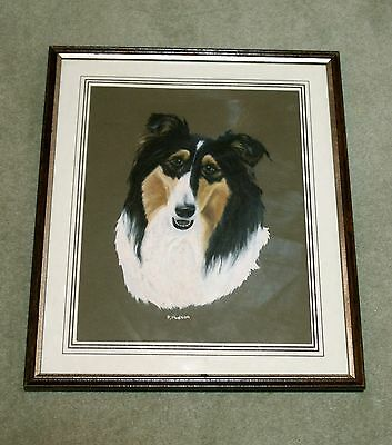 Framed & Glazed Original Handpainted Painting Of A Tricolour Rough Collie