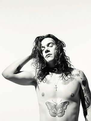 Harry Styles 1D Poster 6 - Various Sizes - Plus A Free Surprise A3 Poster