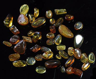 *HHC* Baltic Amber, lot of 45 pieces, fossil inclusions, insects, 26.29g