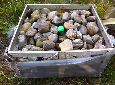 Job Lot (3 Crates) Of Reclaimed Stone Cobbles From Floor Of Old Yorkshire Barn