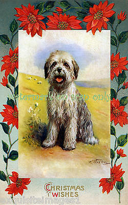 Antique Art~Christmas Old English Sheepdog Puppy NEW Christmas Note Cards