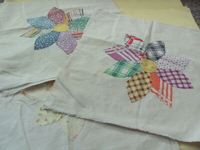 11 large appliqued on muslin daisy quilt blocks