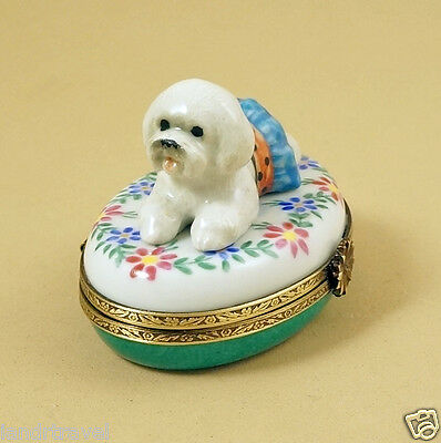 New French Limoges Box Dressed Up Bichon Frise Dog Puppy On Colorful Flowers