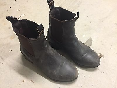 Dublin Riding Boots - Ladies Size USA 6