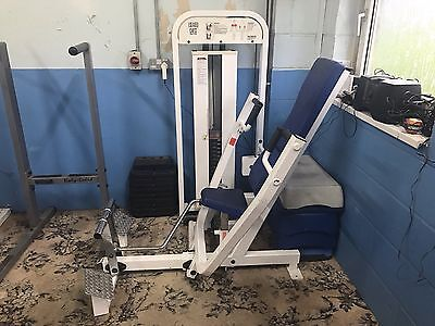 Seated Bench Chest Press Machine Paramount Weights Exercise Lifting