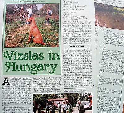 HUNGARIAN VISZLA DOG BREED KENNEL CLIPPINGS incl Vizslas in Hungary article X 30