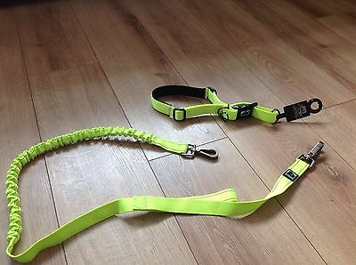 Dog 3 Three Peaks Hands free Running Lead Orange Zig Zag Pets At Home Exercise