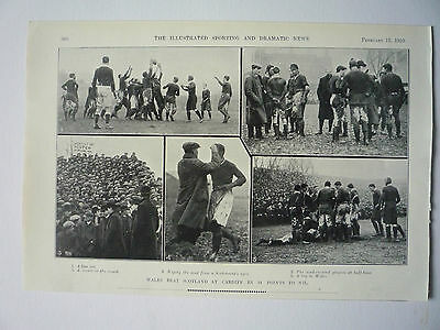 """Rugby. """" Wales Beat Scotland At Cardiff  14 Points To Nil """" 1910. Very Rare."""