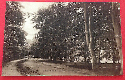 Surrey - Camberley, Staff College Road, Postcard PM 1911