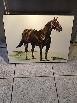 J Fregajo Pen And Ink Watercolour Of A Horse