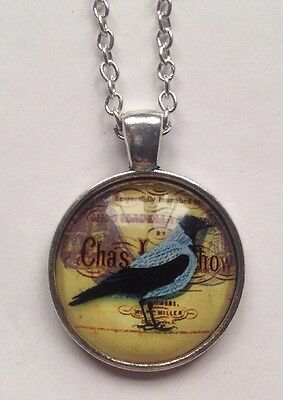 New Bird  Silver Glass Chain Pendant Necklace.