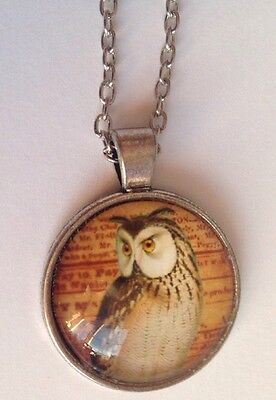 New Bird  EAGLE OWL Silver Glass Chain Pendant Necklace.