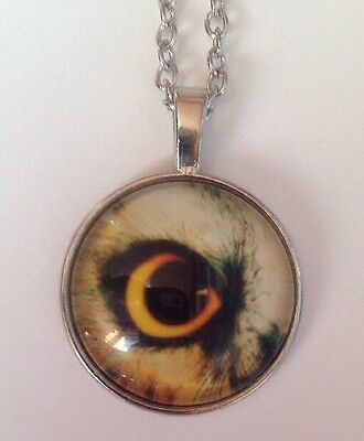 New Bird OWL Silver Glass Chain Pendant Necklace.