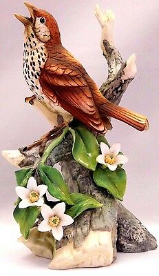 Andrea Collection By Sadek -Porcelain Bird Figurine 8405T: Wood Thrush by Andrea