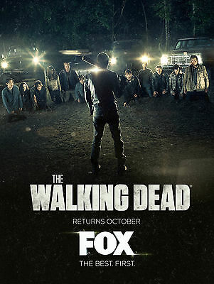 "The Walking Dead :MOVIE 27""x40"" Vinyl Poster HI-RES banner"