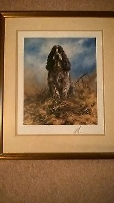 MICK CAWSTON Cocker Spaniel Limited Edition print signed, framed and glazed