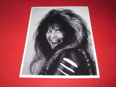 WASP BLACKIE LAWLESS W.A.S.P 10x8 inch lab-printed photo P/8806
