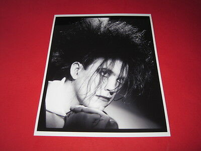 THE CURE ROBERT SMITH  10x8 inch lab-printed photo P/8818