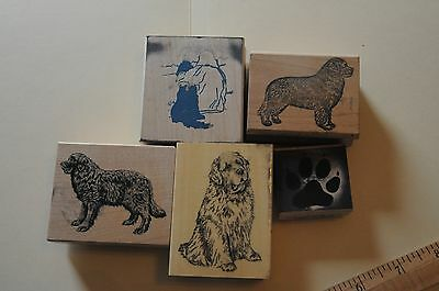 4 Newfoundland dog rubber stamps, Plus paw print