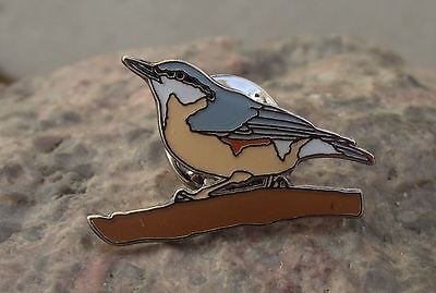 American Nuthatch Picidae Climbing Clinging to Tree Trunk Bird Brooch Pin Badge