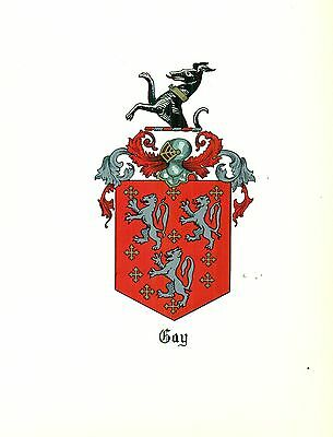 *Great Coat of Arms Gay Family Crest genealogy, would look great framed!