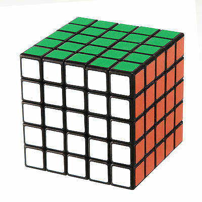 Shengshou ABS Magic 5x5x5 Ultra-smooth Professional Speed Cube Puzzle Twist