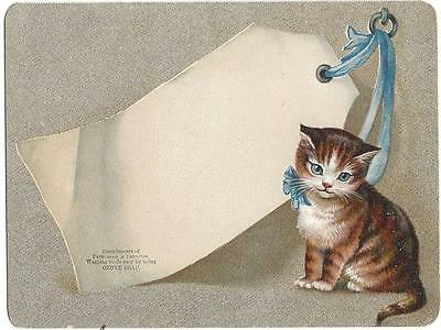 Ozone Soap - Trade Card - Kitten with Blue Ribbon - Fairchild & Shelton Lith, CT