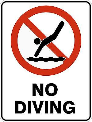 Safety Sign - NO DIVING