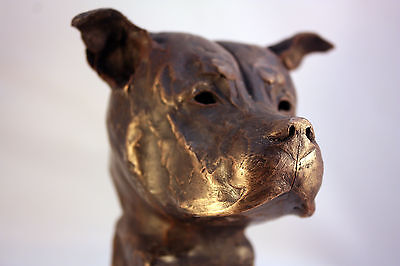 Bronze Bust Limited Edition Staffordshire Bull Terrier sculpture staffy ornament