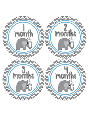 Months in Motion 381 Monthly Baby Stickers Baby Boy Elephants Months 1-12