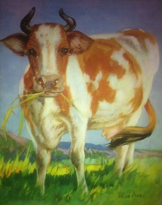 CATTLE COW beautiful Vintage Print 1935 Diana Thorne Color BOVINE