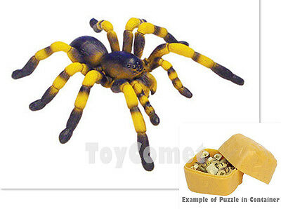 Tarantula Spider Desert Creatures Animal 4D 3D Puzzle Realistic Model Kit Toy
