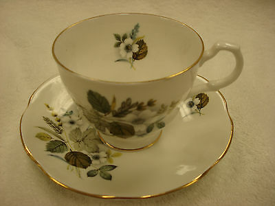 Rosina TEA CUP & SAUCER Woodland Floral  Made In England TR7