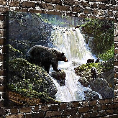 HD Canvas Print Paintings Animal Waterfall Bear  Home Decor Wall Art Pictures