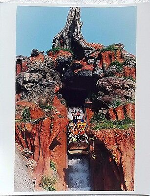 Rare 1992 Disney Wdw Splash Mountain Opening Briar Patch Plunge Publicity Photo
