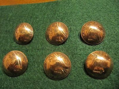 Original 1902-1936 Old British Half Penny Coin Shank Buttons(6) Lot 7/8 Diameter