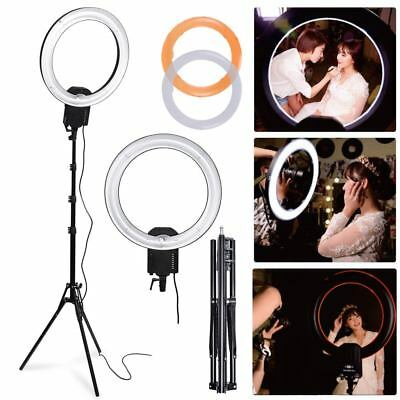 Studio 65W 5400K Dimmable Diva Ring Light Filter + 185cm Stand for Photo Video