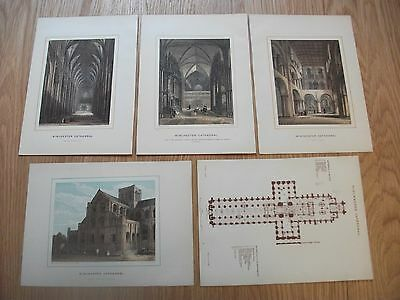 Antique Engraving print Book Plate Winchester Cathedral x5 inc ploor plan