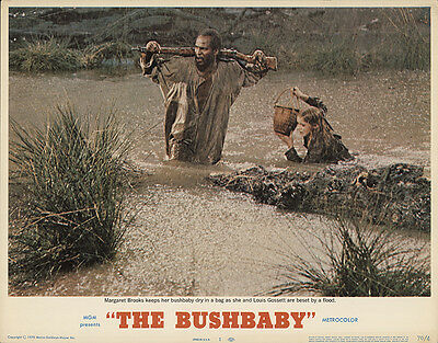 The Bushbaby 1970 Original Movie Poster Adventure Drama History