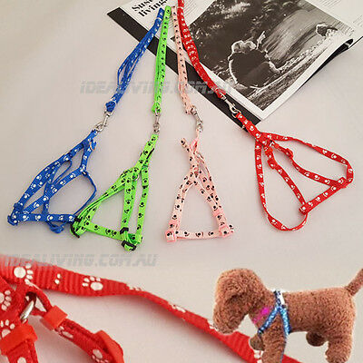 Small Pet - Cat Puppy Kitten Rabbit Dog Harness Lead Leash Collar - Nylon