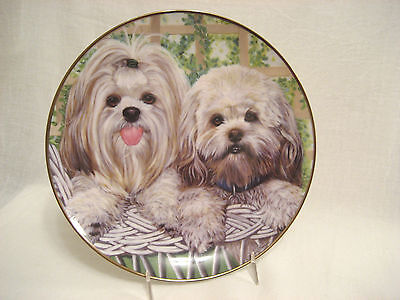 Lhasa Apsos Dog Collector Plate Danbury Mint Patricia Bourque Darling Duo 8.25""
