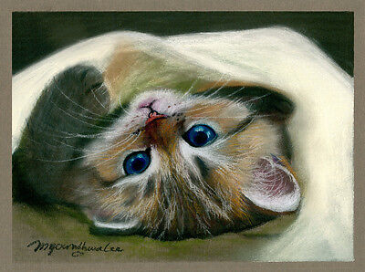 ACEO Limited Edition- Little Bo-peep, Art print, Gift for cat lovers