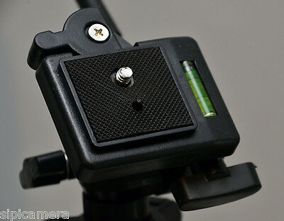 Quick Release Plate for Dynex NW080 Tripod