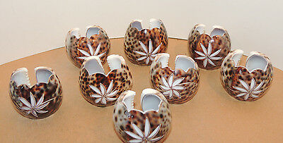 Etched Shell Napkin Rings Set Set of 8 (10937)